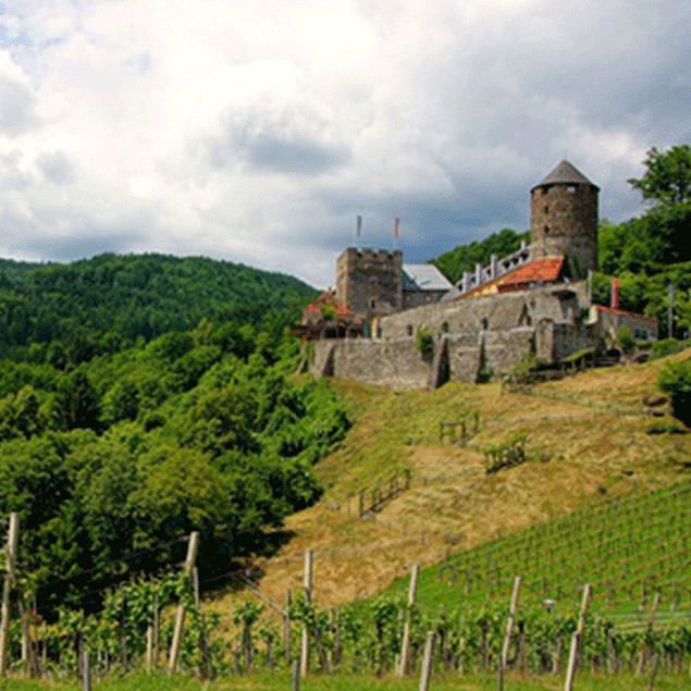 Burg Deutschlandsberg at vineyards