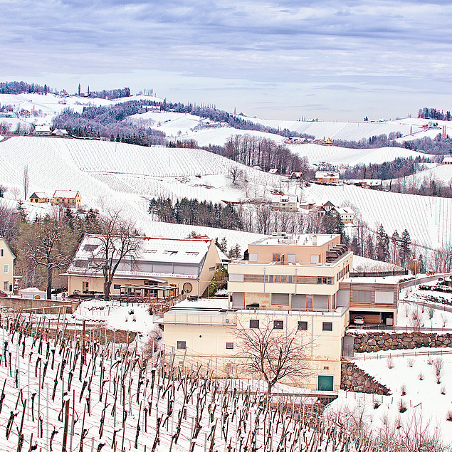 Beautiful winter landscape on the wine road