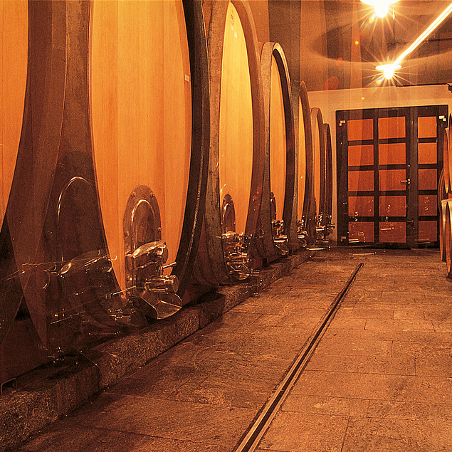 Large wine barrels in a typical old wine cellar