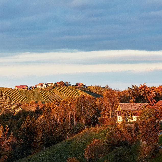 Autumn landscape on the Weinstrasse