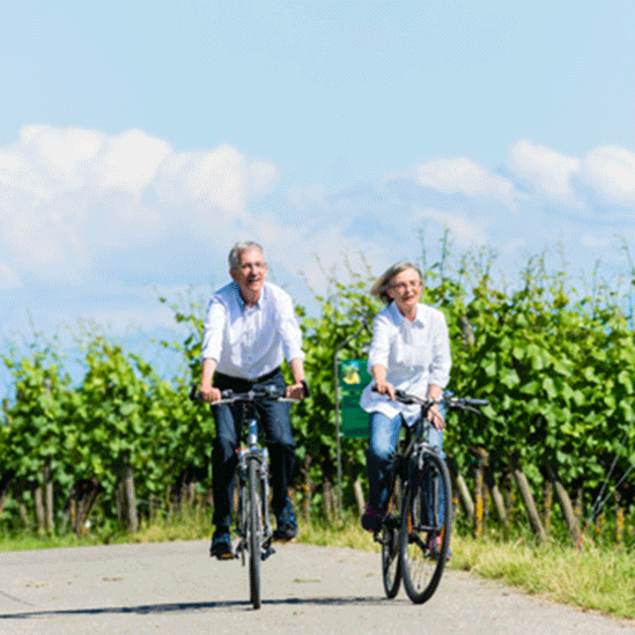 Elders but fittes couple cycling in the South Styrian wine country