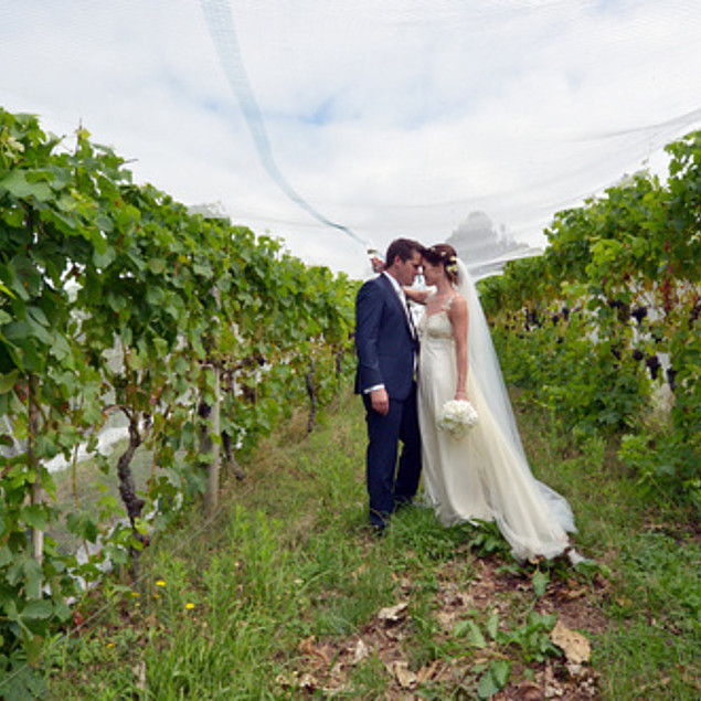Kissing couple in the middle of the vineyard