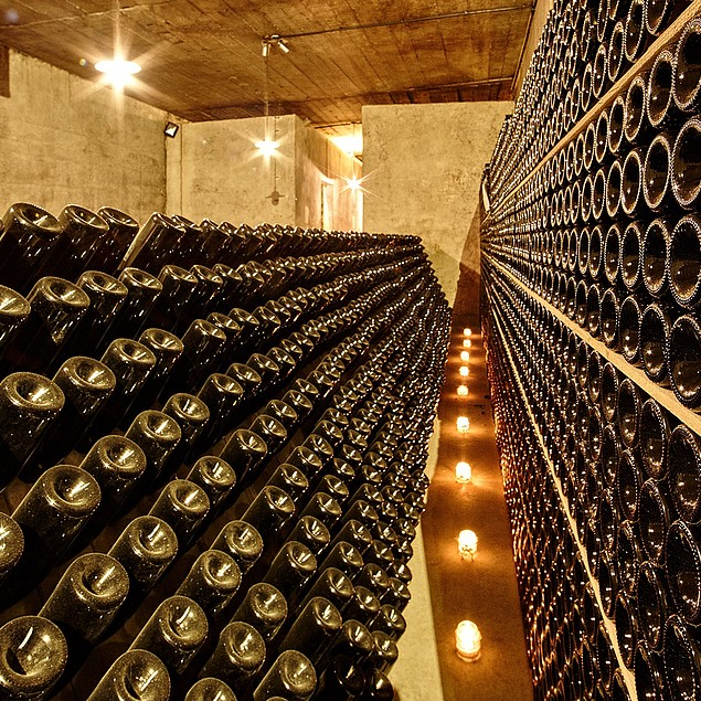 Sparkling wine cellar arranged on rows in rows