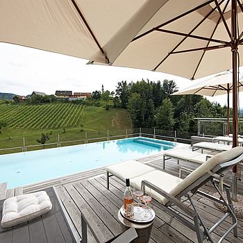 Komfortable Terrasse mit Pool am Pössnitzberg